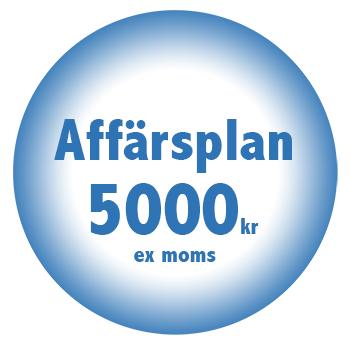 Affarsplan online billigt fastpris 5000 kr