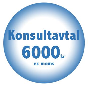 Konsultavtal online billigt fastpris 6000kr
